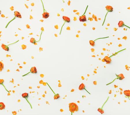Foto de Floral texture, pattern or wallpaper. Flat-lay of orange ranunculus flowers over white background, top view, copy space. Greeting card or wedding invitation concept - Imagen libre de derechos