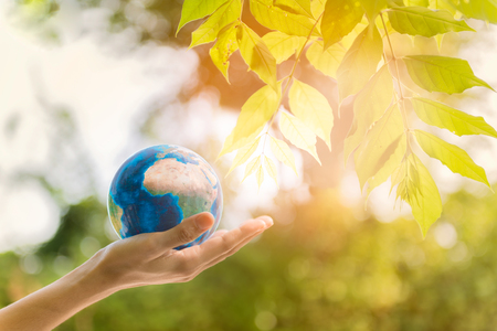 Photo pour Holding earth planet in the hand with tree and against green spring background. Corporate Social Responsibility or CSR concept. Elements of this image furnished by NASA - image libre de droit