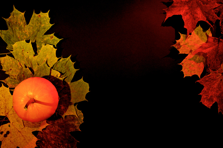 Photo pour Autumn leaves and pumpkin on dark background - image libre de droit