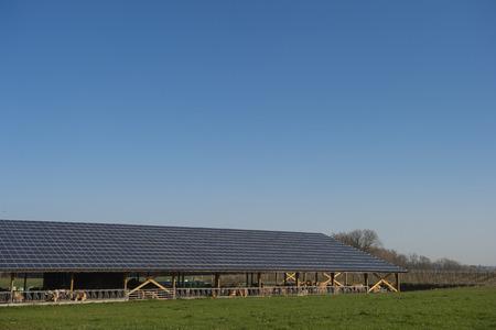 Photo pour Solar panels on a cowshed - image libre de droit