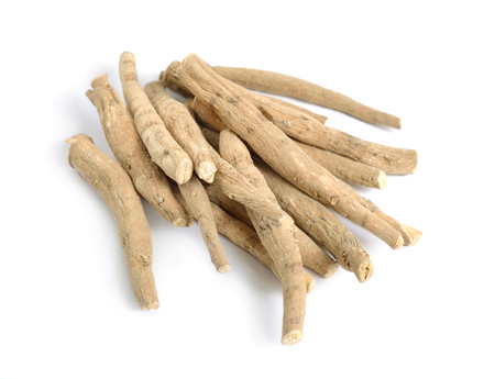 Photo pour Root Withania somnifera, known commonly as ashwagandha, Indian ginseng, poison gooseberry or winter cherry - image libre de droit