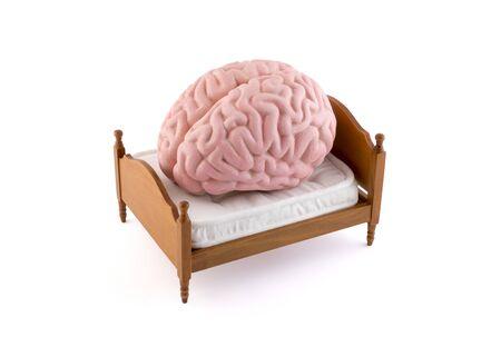 Foto de Human brain resting on the bed isolated on white background - Imagen libre de derechos