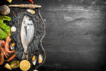 Foto de Fresh seafood. Fresh fish with shrimp, lemon and spices. On a black chalkboard. - Imagen libre de derechos