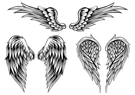 Illustration for Abstract illustration wings set - Royalty Free Image