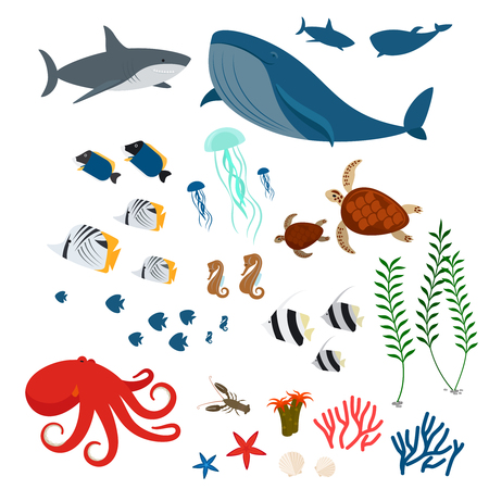 Illustration for Ocean animals, sea fauna and sea fishes. Ocean fauna icons on white background. Vector illustration - Royalty Free Image