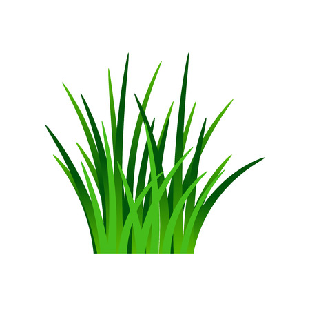 Ilustración de Dark green grass isolated on white background, vector illustration - Imagen libre de derechos