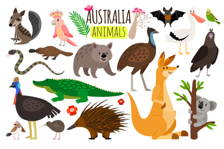 Illustration pour Australian animals. Vector animal icons of Australia, kangaroo and koala, wombat and ostrich emu - image libre de droit