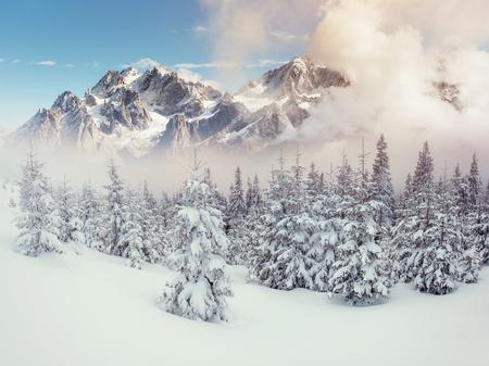 Photo pour Mysterious landscape majestic mountains in winter. - image libre de droit