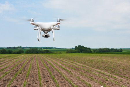 Foto de drone quad copter with high resolution digital camera on green corn field - Imagen libre de derechos