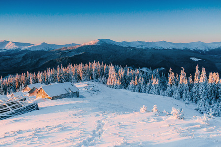 Foto de Mysterious winter landscape majestic mountains in winter. Magical winter snow covered tree. Winter road in the mountains. In anticipation of the holiday. Dramatic wintry scene. Carpathian. Ukraine - Imagen libre de derechos