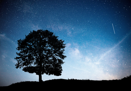 Photo pour Landscape with night starry sky and silhouette of tree on the hill. Milky way with lonely tree, falling stars. Universe - image libre de droit