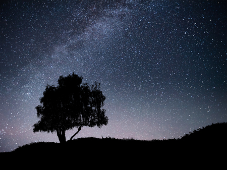 Foto de Landscape with night starry sky and silhouette of tree on the hill. Milky way with lonely tree, falling stars. Universe - Imagen libre de derechos