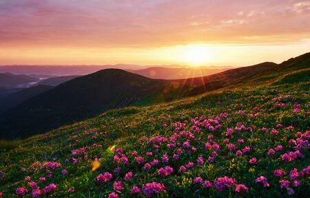 Cloudly sky. Majestic Carpathian mountains. Beautiful landscape. Breathtaking view.