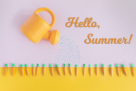 Photo pour Summertime concept with bright color carrot beds and watering can, top view and flat lay. Hello Summer text. - image libre de droit