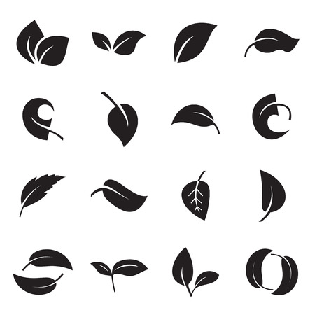 Icons of leaves islolated on a white background. Vector illustration