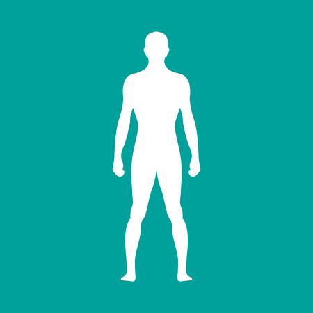 Ilustración de Human  body outline in white. Vector illustration - Imagen libre de derechos