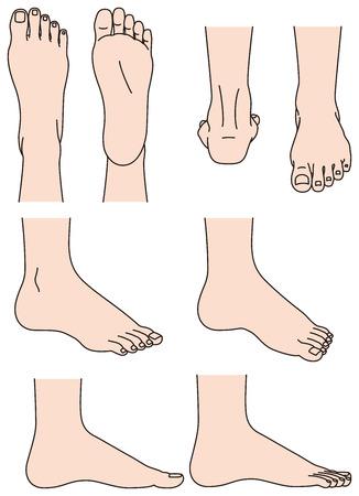 Ilustración de The shape of the foot - Imagen libre de derechos