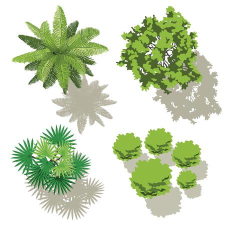 Illustration pour Trees top view, design for map - image libre de droit