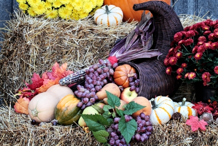 Cornucopia or Horn of Plenty on bales of straw with fresh vegetables and fruit spilling out.