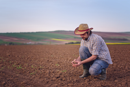 Foto für Male Farmer Examines Soil Quality on Fertile Agricultural Farm Land - Lizenzfreies Bild