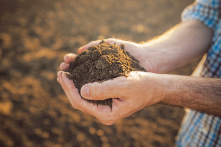 Photo for Farmer holding pile of arable soil in hands, responsible and sustainable agricultural production, close up with selective focus - Royalty Free Image