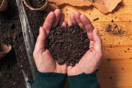 Photo for Gardener holding soil in cupped hands, top view of female organic food producer handful of humus for growing plants - Royalty Free Image