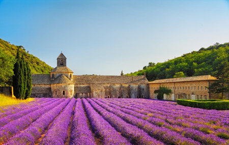 Foto de Abbey of Senanque and blooming rows lavender flowers on sunset. Gordes, Luberon, Vaucluse, Provence, France, Europe. - Imagen libre de derechos