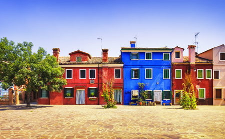Photo for Venice landmark, Burano island square, tree and colorful houses, Italy, Europe. - Royalty Free Image