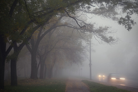 Photo for Fog in the city an autumn day - Royalty Free Image