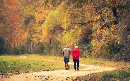 Foto de Old couple walking in the autumn forest. - Imagen libre de derechos