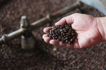 Foto de Hand of man test roasted coffee bean during process - Imagen libre de derechos