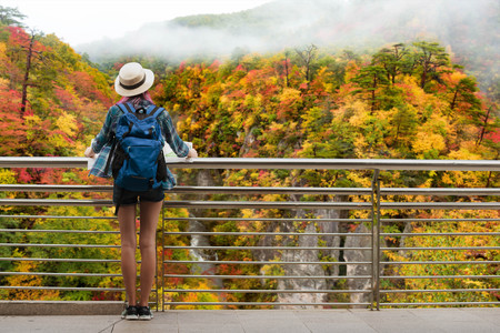 Photo for Woman westerner travel in backpack with map looking at landscape of autumn forest in japan - Royalty Free Image