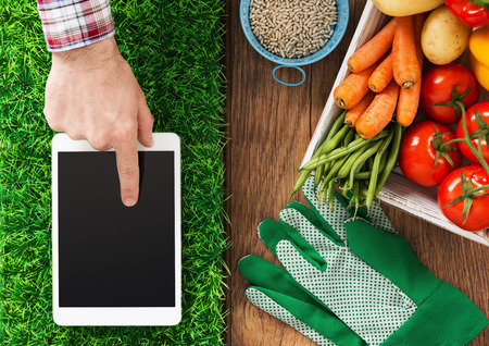 Photo for Digital tablet on grass, fresh vegetables and farmer's hand touching the touch screen display, gardening and farming app concept - Royalty Free Image
