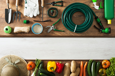 Foto de Gardening and farming tools on a wooden table and freshly harvested vegetables, blank copy space, top view - Imagen libre de derechos