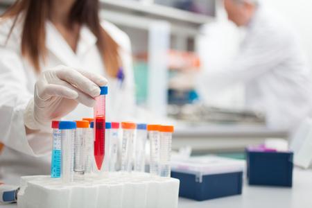 Foto de Scientist at work in a laboratory - Imagen libre de derechos