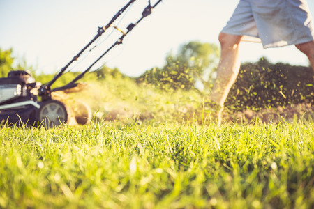 Foto de Photo of a young man mowing the grass during the beautiful evening. - Imagen libre de derechos