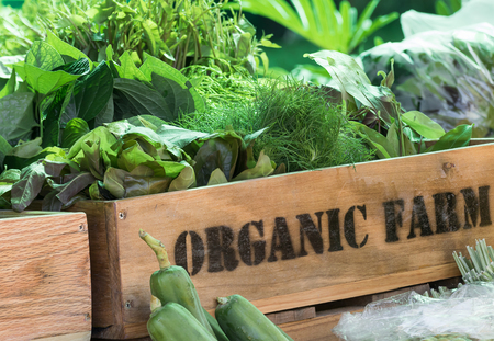 Photo for Fresh organic produce from farm in wooden box - Royalty Free Image