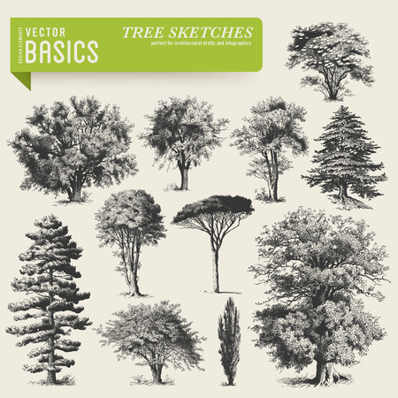 Illustration for vector elements  tree sketches - Royalty Free Image