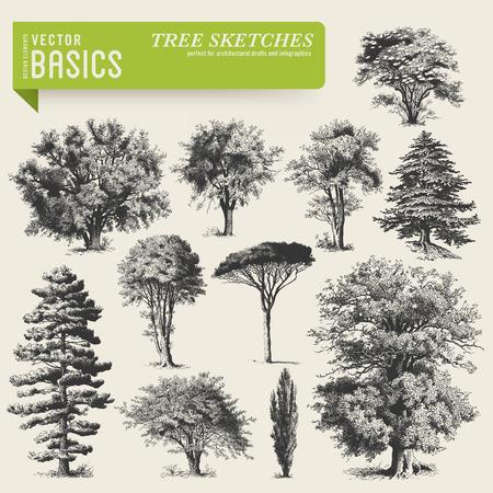 Ilustración de vector elements  tree sketches - Imagen libre de derechos