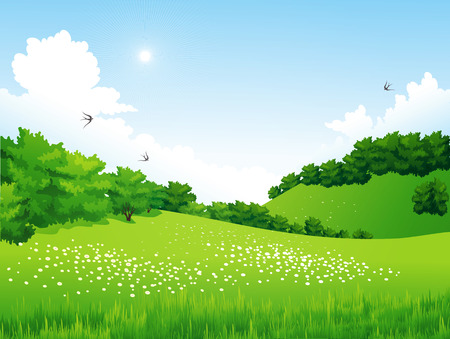 Illustration pour Vector Green Landscape with trees, clouds, flowers. Summer meadow - image libre de droit