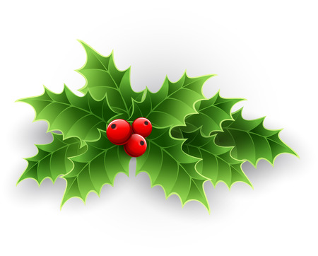 Ilustración de Christmas Holly Berry isolated on white. Vector illustration - Imagen libre de derechos