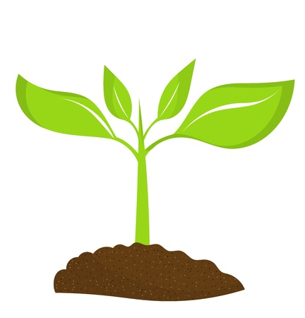 Ilustración de Plant seedling growing in soil. illustration - Imagen libre de derechos