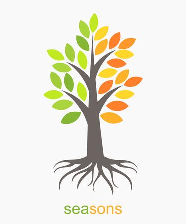 Ilustración de Autumn and spring seasons tree. Vector illustration - Imagen libre de derechos