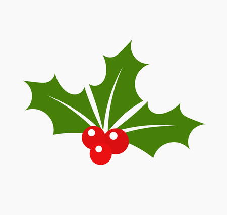 Photo for Christmas holly berry leaves. Vector illustration - Royalty Free Image