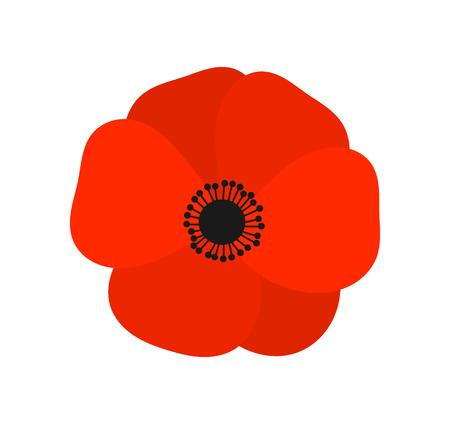 Ilustración de Red poppy  flower. Vector illustration - Imagen libre de derechos