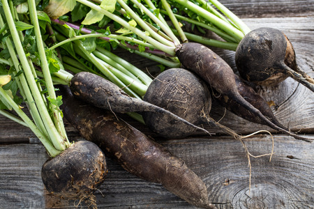 Foto de closeup of cracked organic round and long black radishes with fresh green tops and roots on old wood background for sustainable agriculture, studio shot - Imagen libre de derechos
