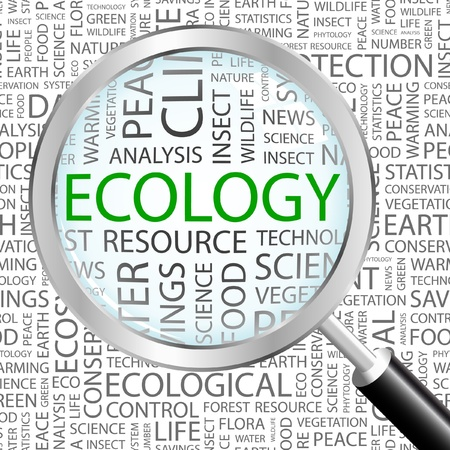ECOLOGY. Magnifying glass over background with different association terms. Vector illustration.