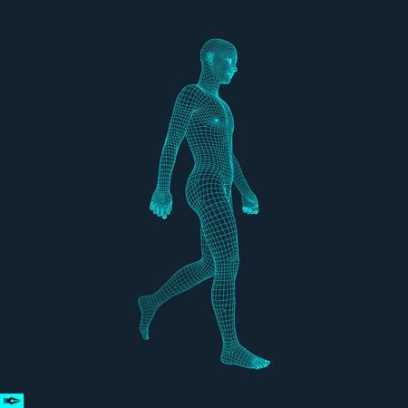 Illustration pour Walking Man. 3D Human Body Model. Geometric Design. Human Body Wire Model.  Vector Illustration. - image libre de droit