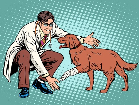Illustration pour vet dog wounded paw pop art retro style. Doctor of veterinarian and treatment in the veterinary clinic. treatment of domestic and farm animals. Pets - image libre de droit