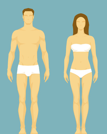 Photo pour stylized illustration of a healthy body type of man and woman - image libre de droit